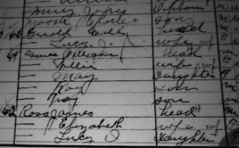 Census from the 1800's. Love the old script. Need to work on that. Both reading and writing!