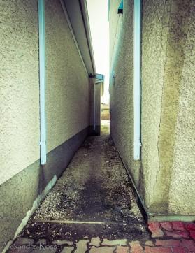 Old Walls-12