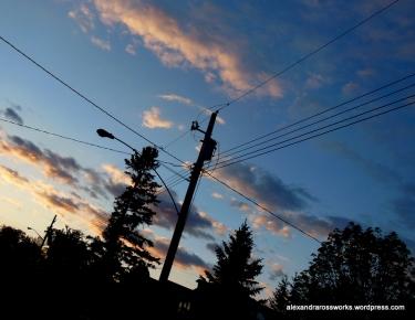Streetlight Silhouette