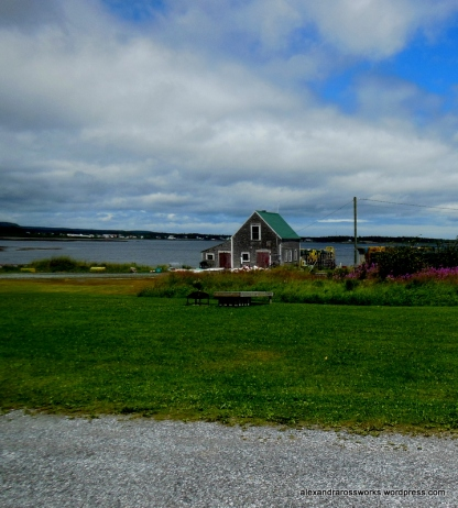 A View from the cottage