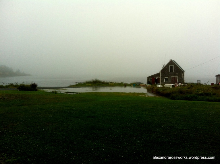 A foggy view