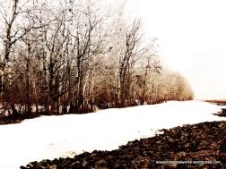 1-2014springlarrys_0012_edited-1