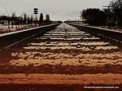 1-2014springlarrys_0064_edited-1