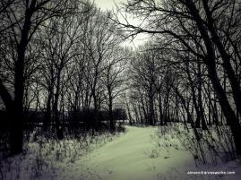 1-Snow Path-1