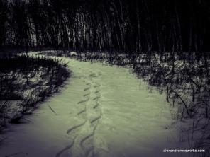 1-Snow Path-3